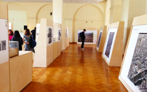 A Room within the City – A Place for Dialogue and Planning Imagination (2014)